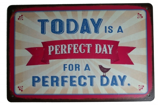 Vintage Art Blechschild Perfect Day
